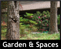 Garden and Spaces